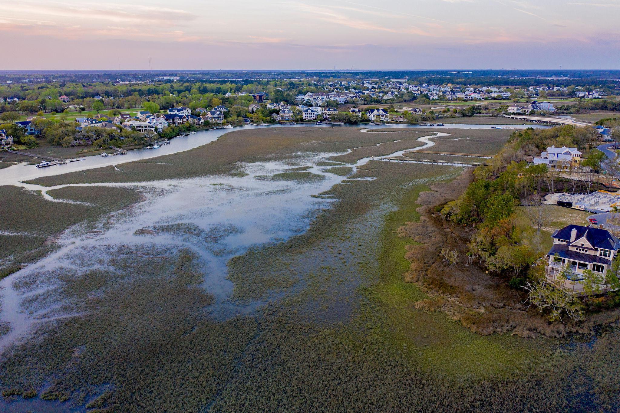 Daniel Island Park Homes For Sale - 113 Captains Island, Charleston, SC - 3