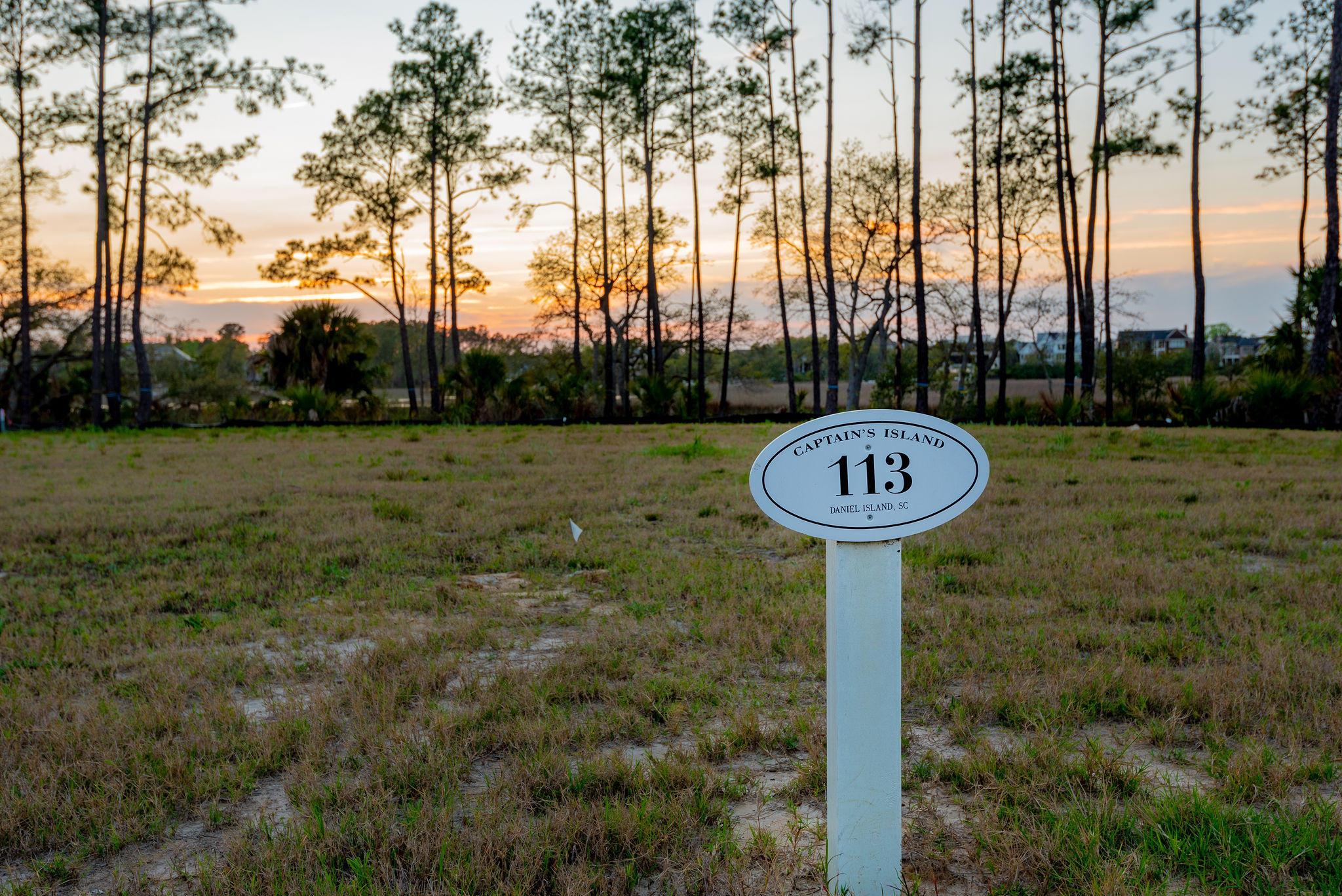 Daniel Island Park Homes For Sale - 113 Captains Island, Charleston, SC - 0