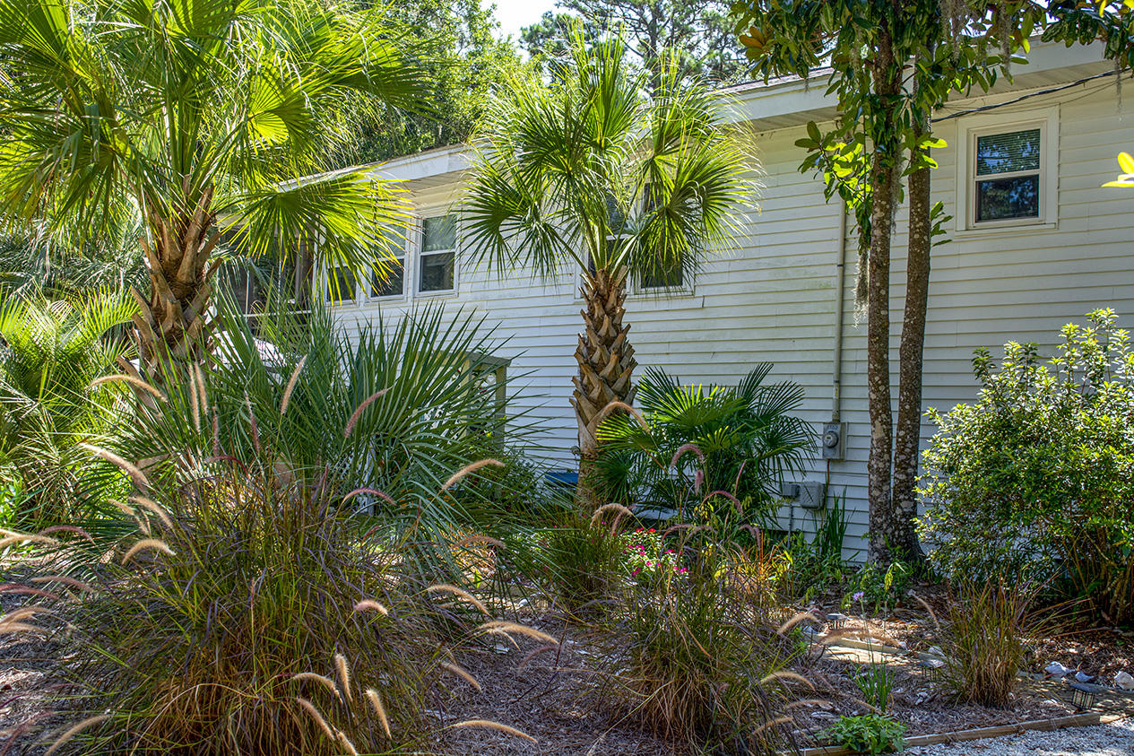 Jungle Shores Homes For Sale - 1702 Jungle, Edisto Beach, SC - 10