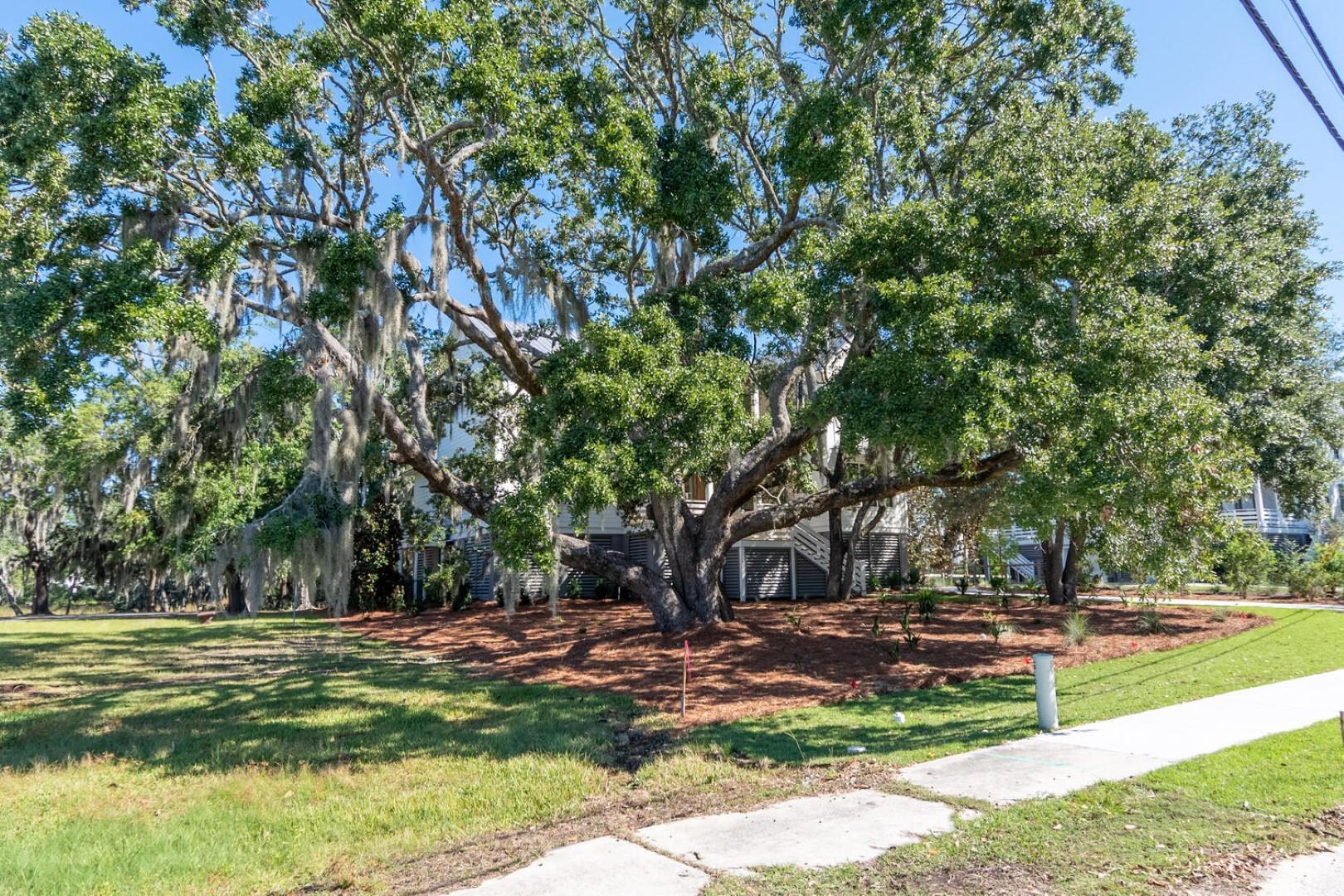 Scanlonville Homes For Sale - 156 5th, Mount Pleasant, SC - 43