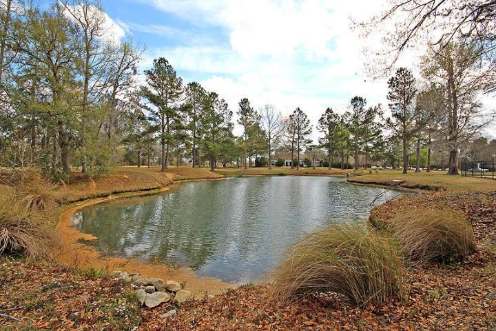 Crowfield Plantation Homes For Sale - 113 Waveney, Goose Creek, SC - 19