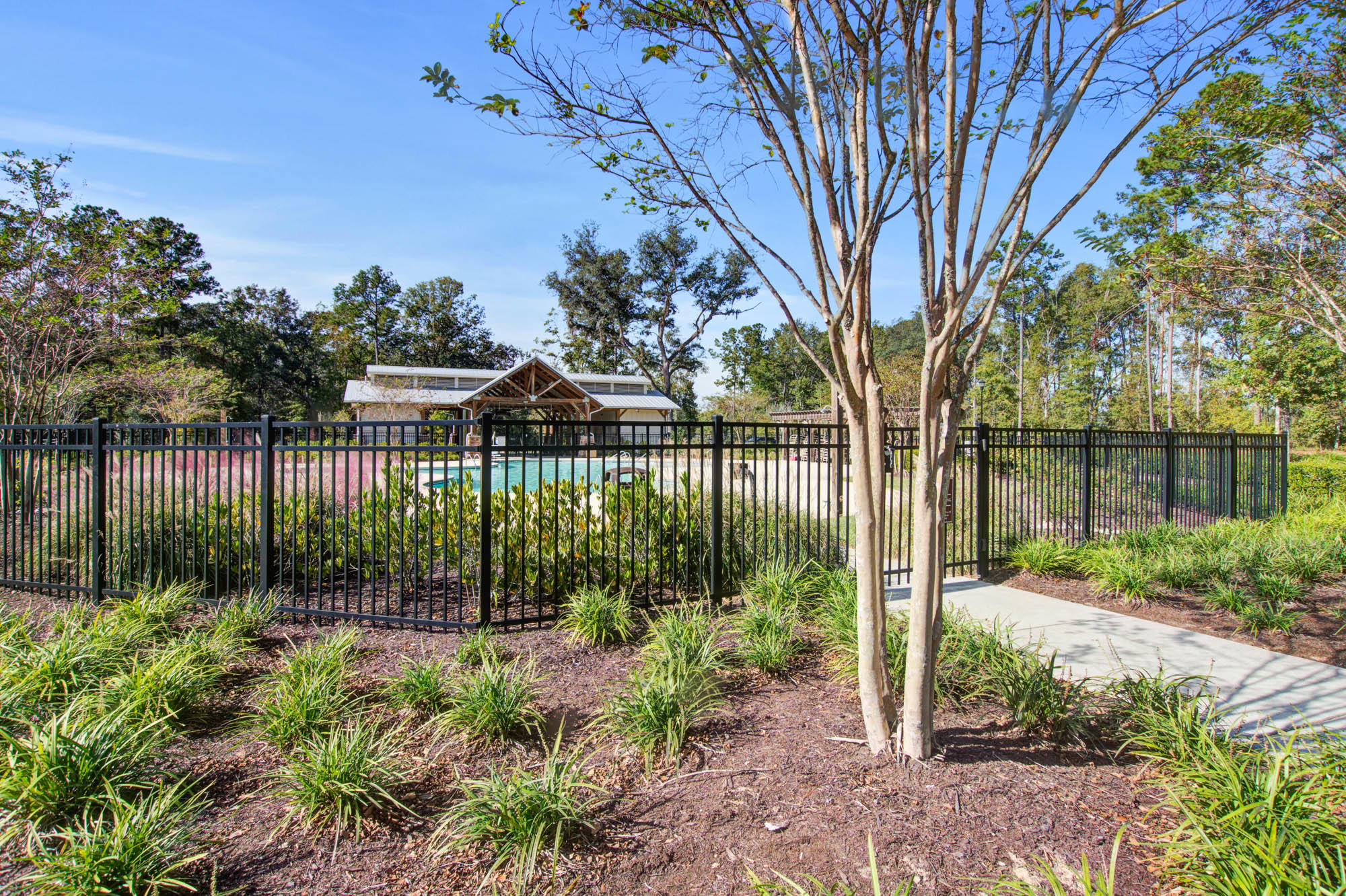 Coosaw Preserve Homes For Sale - 9725 Black Willow, Ladson, SC - 25