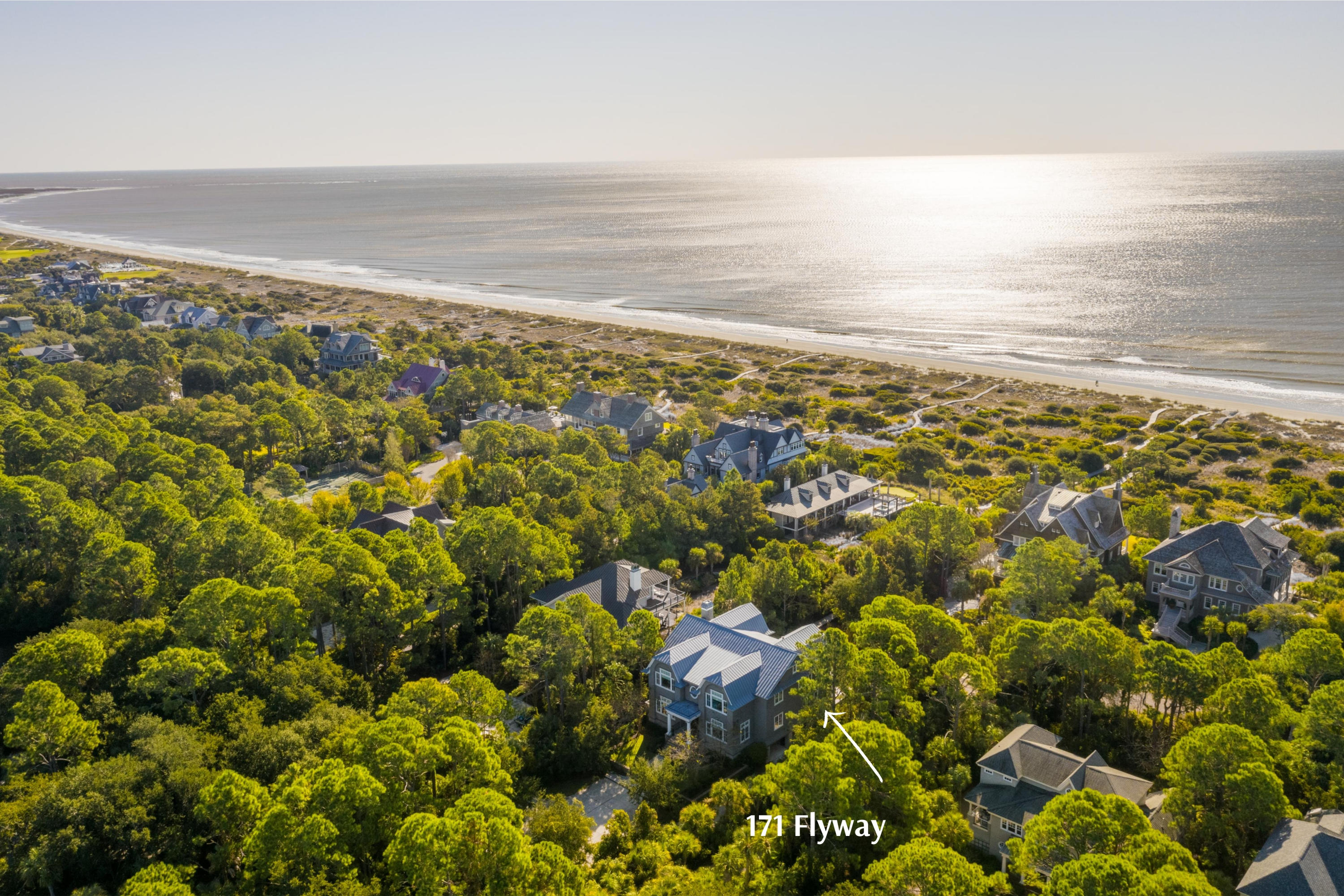 Kiawah Island Homes For Sale - 171 Flyway, Kiawah Island, SC - 13