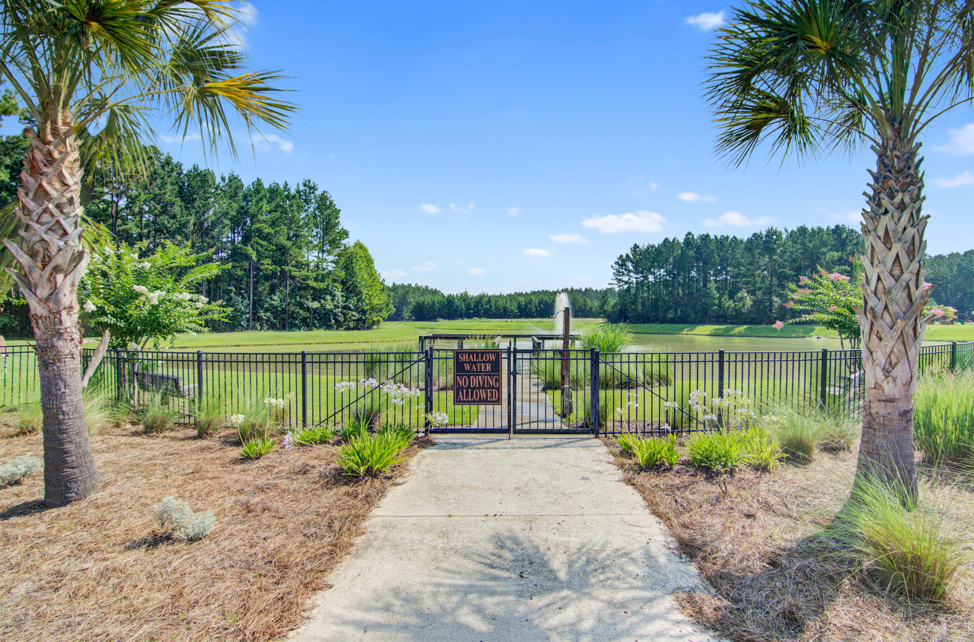 Wassamassaw Plantation Homes For Sale - 1323 Wood Sorrel, Moncks Corner, SC - 6