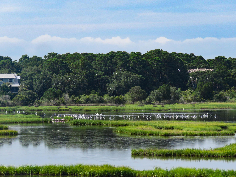 Dewees Island Lots For Sale - 260 Pelican Flight, Dewees Island, SC - 5