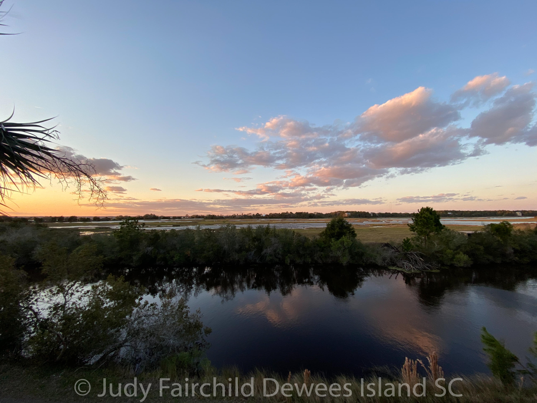 Dewees Island Lots For Sale - 260 Pelican Flight, Dewees Island, SC - 2