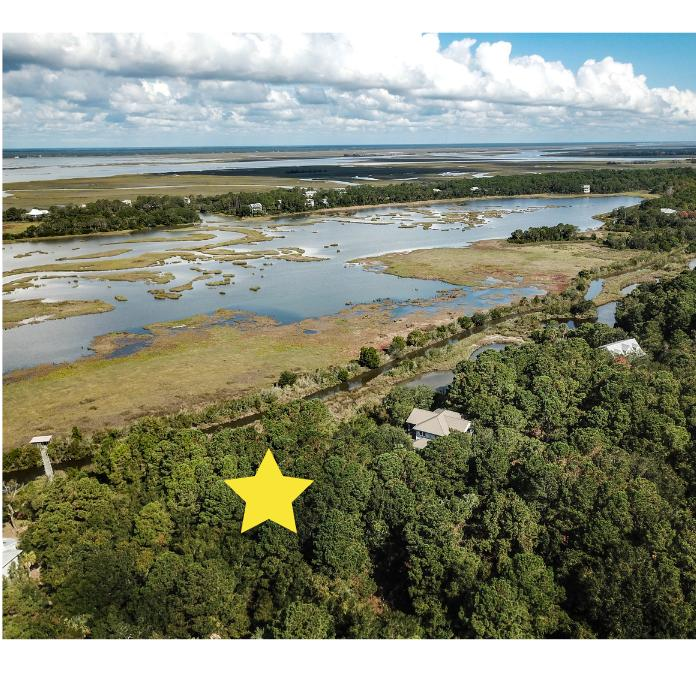 Dewees Island Lots For Sale - 260 Pelican Flight, Dewees Island, SC - 18