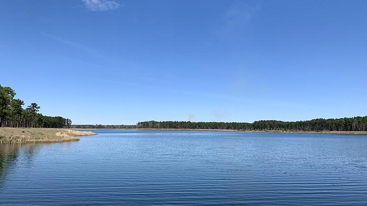 Cane Bay Plantation Homes For Sale - 168 Whaler, Summerville, SC - 8