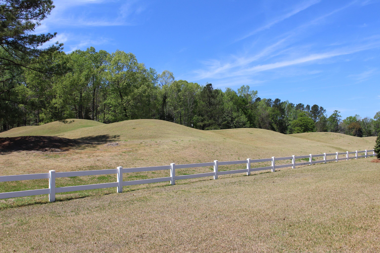 Crowfield Plantation Homes For Sale - 164 Bridgecreek, Goose Creek, SC - 8