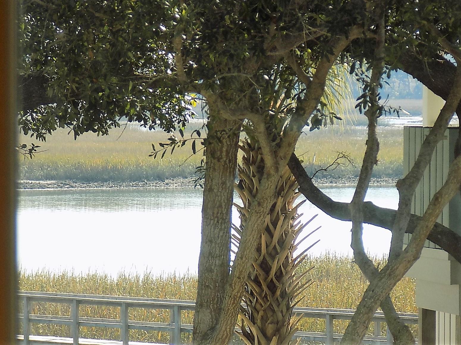 Palmetto Pointe Homes For Sale - 1626 Folly Creek, Charleston, SC - 1
