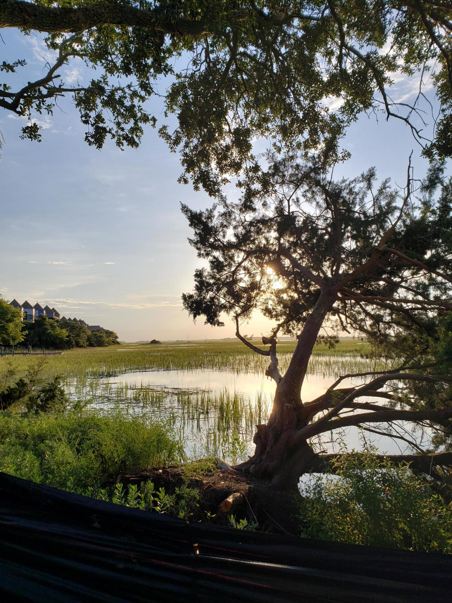Mariners Cay Homes For Sale - 1008 Mariners Cay, Folly Beach, SC - 7