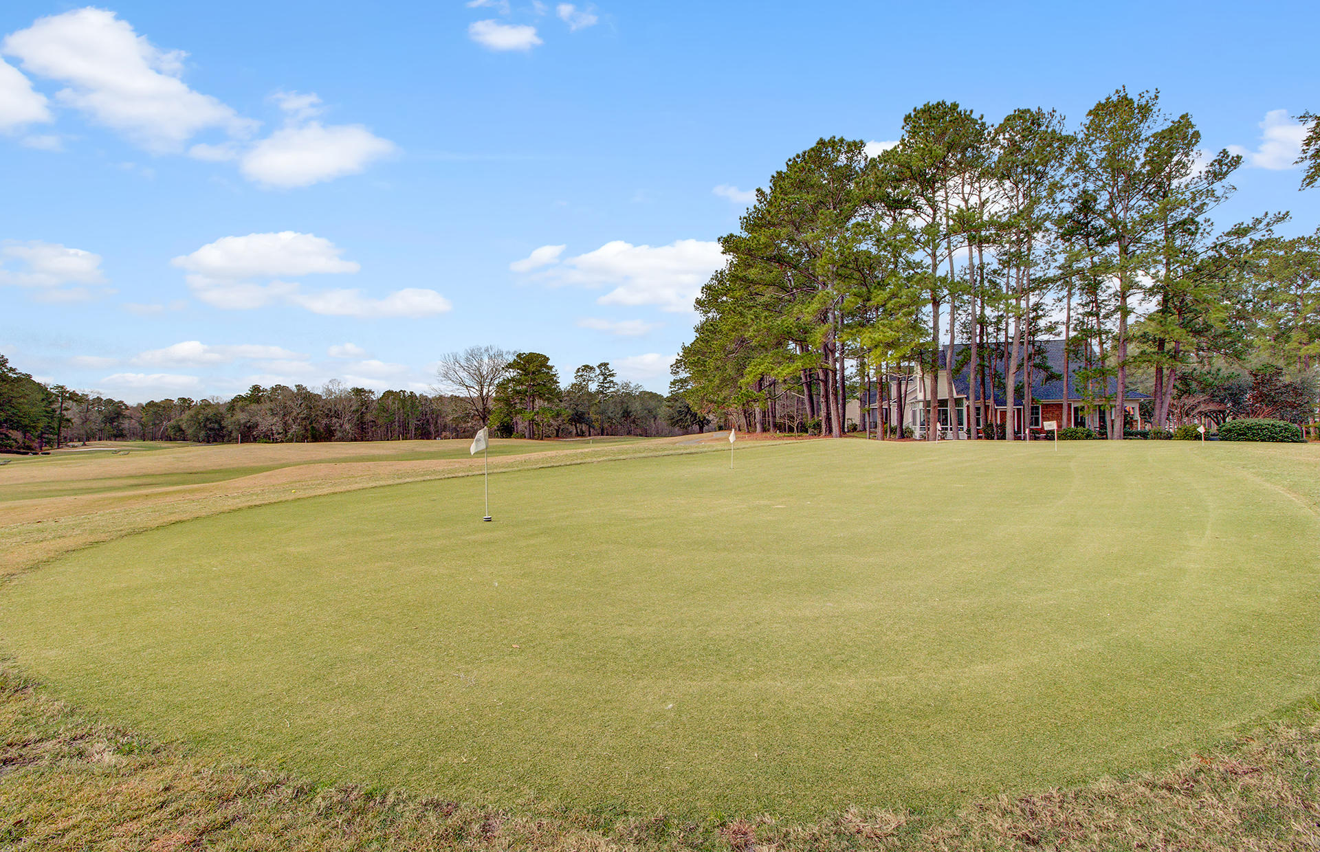 Legend Oaks Plantation Homes For Sale - 205 Carolinian, Summerville, SC - 4