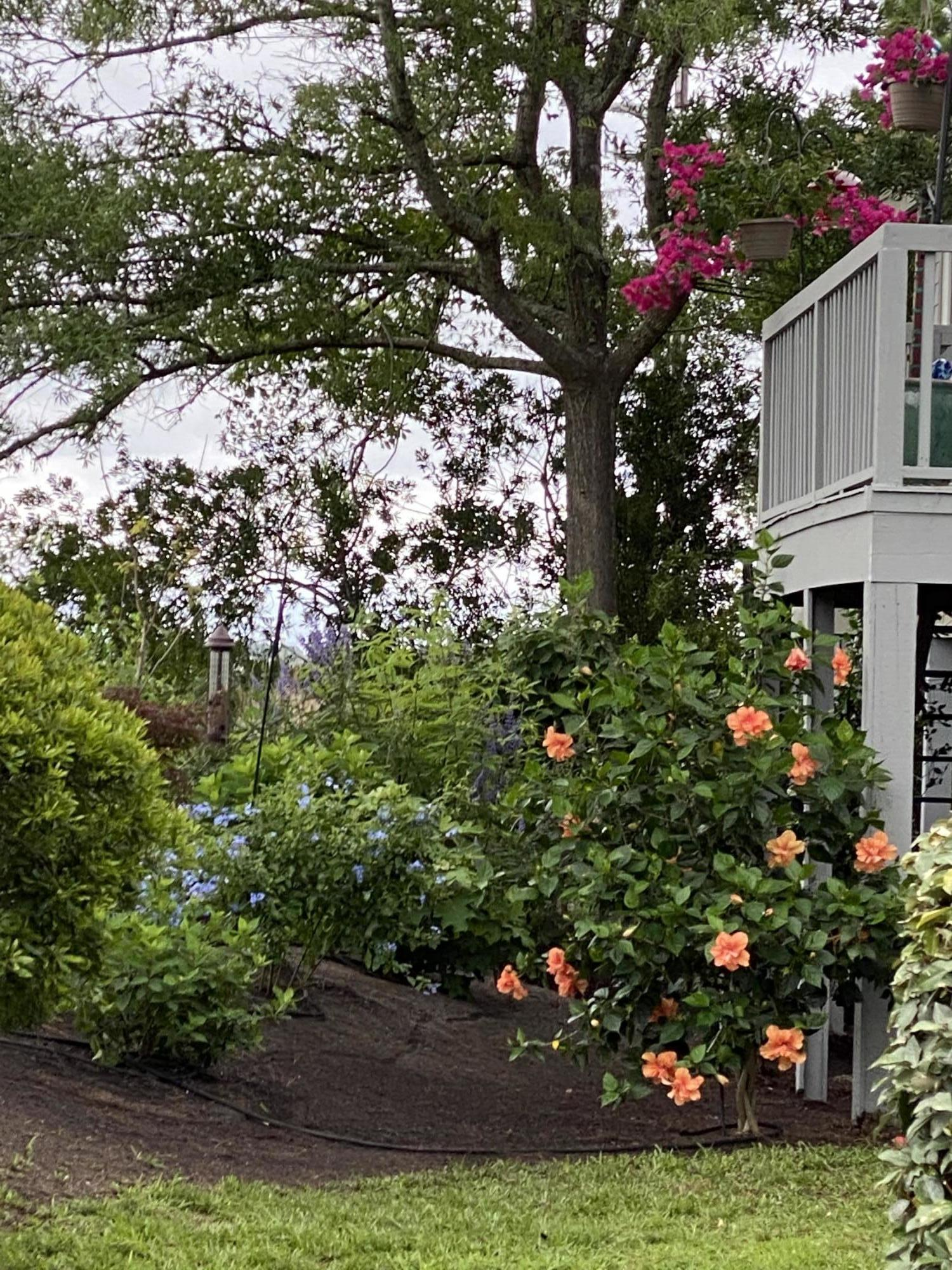 Harbor Creek Homes For Sale - 670 Harbor Creek, Charleston, SC - 4