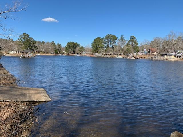 Lizzie Creek Homes For Sale - 1276 Ackerman, Summerton, SC - 11