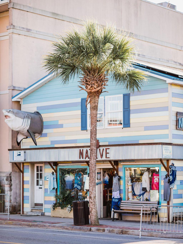 None Homes For Sale - 111 Erie, Folly Beach, SC - 6