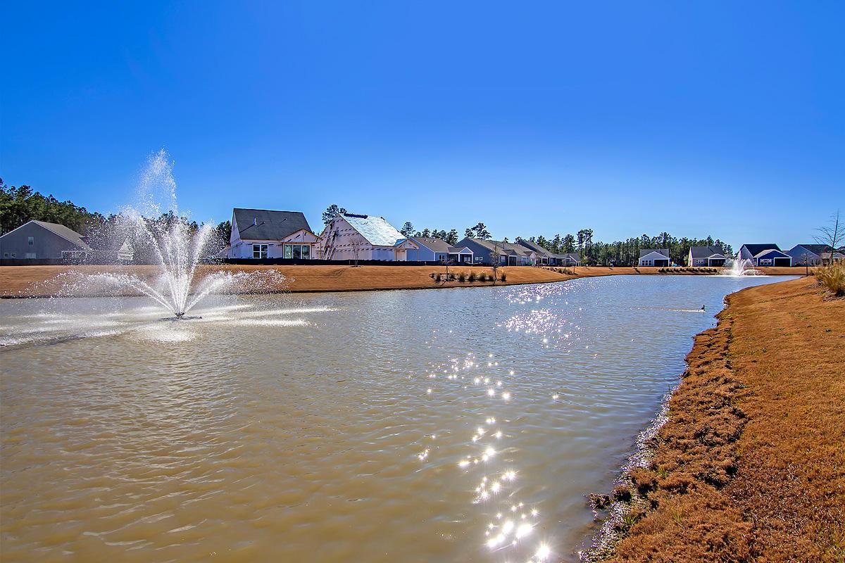 Nexton Homes For Sale - 129 Potters Pass, Summerville, SC - 3