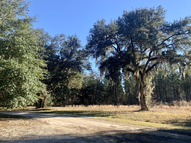 1477 Oregon Road, Green Pond, 29446, ,Vacant Land,For Sale,Oregon,21004551