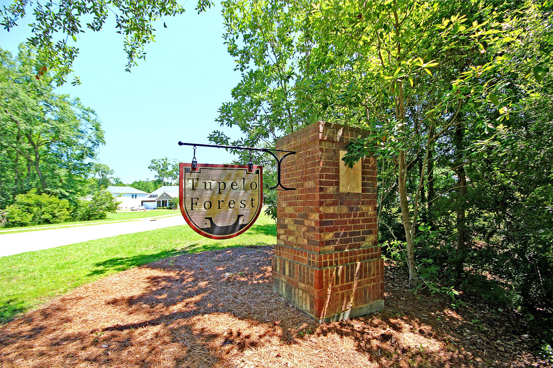 Tupelo Homes For Sale - 1309 Belgian Draft, Mount Pleasant, SC - 0