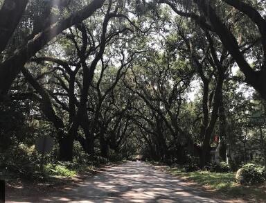 Charleston Address - MLS Number: 21007330