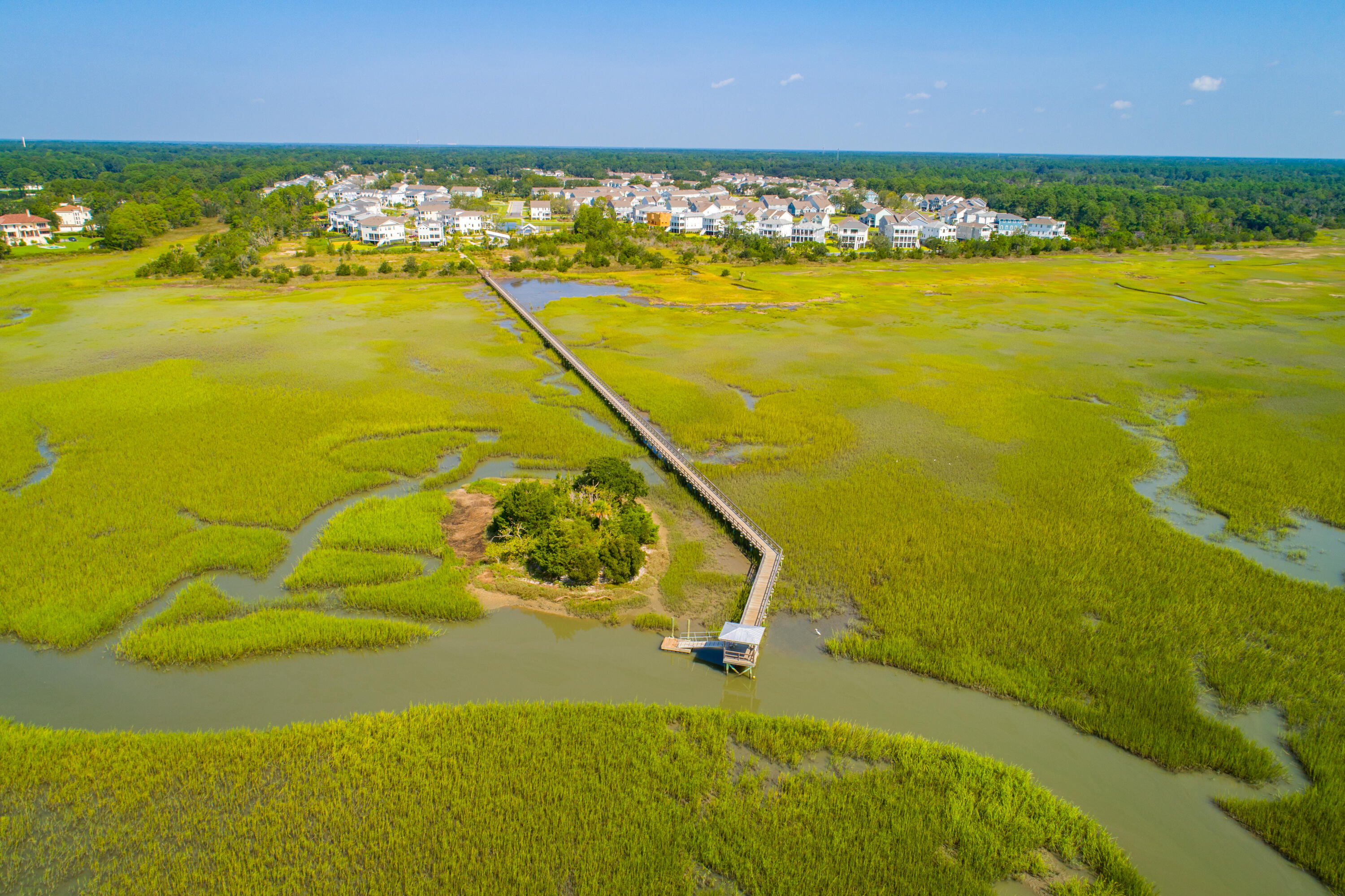 Oyster Point Homes For Sale - 2204 Dewees Creek, Mount Pleasant, SC - 71