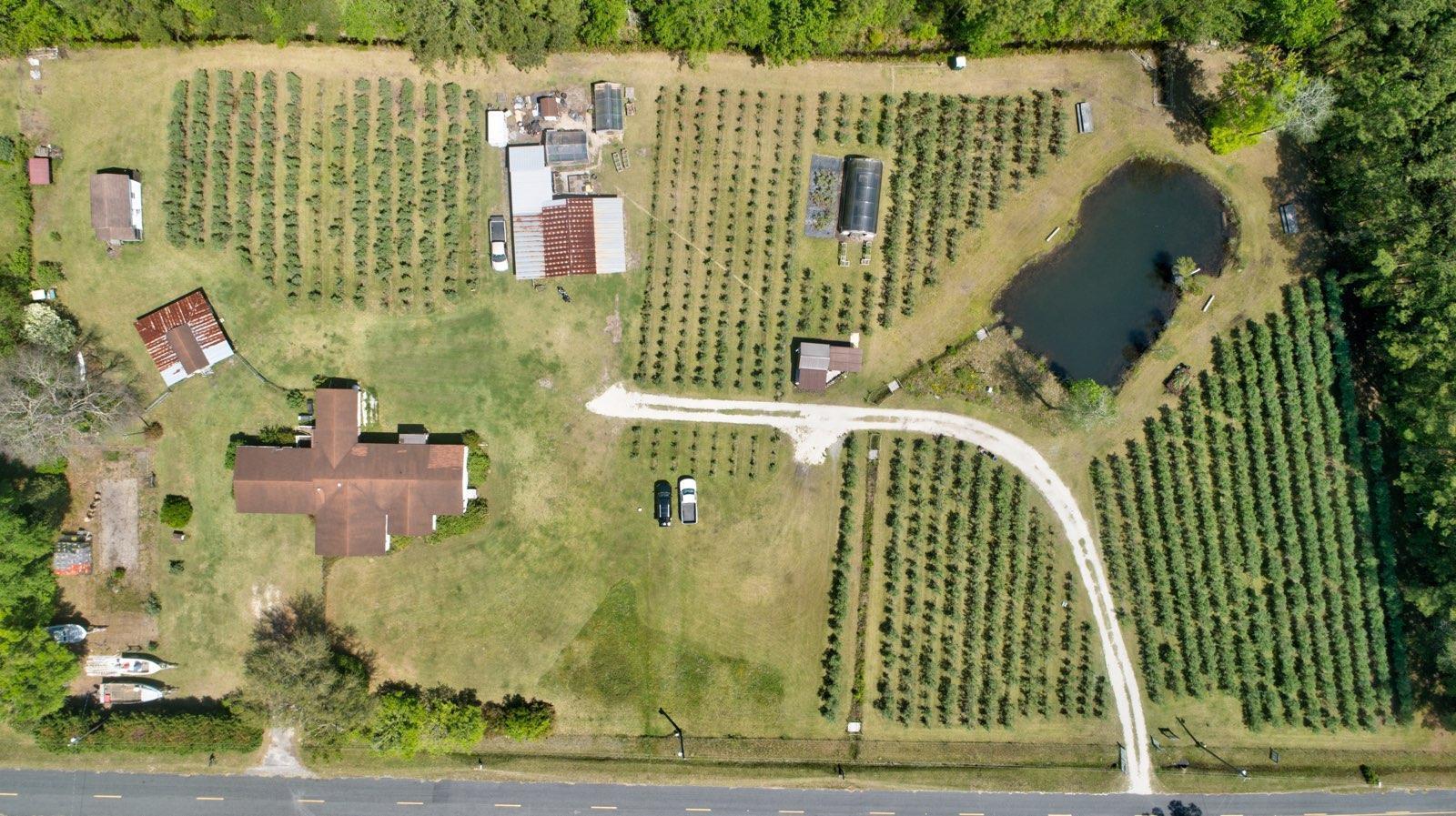 Gapway Plantation Homes For Sale - 9760 Randall, McClellanville, SC - 22