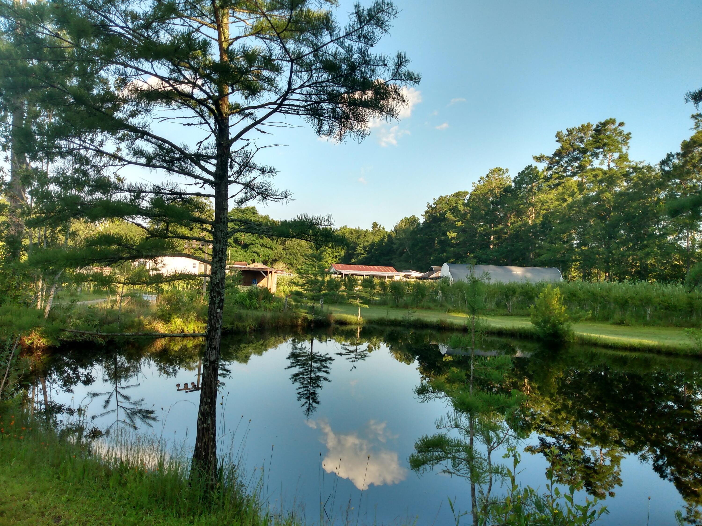 Gapway Plantation Homes For Sale - 9760 Randall, McClellanville, SC - 20