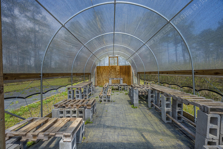 Gapway Plantation Homes For Sale - 9760 Randall, McClellanville, SC - 10