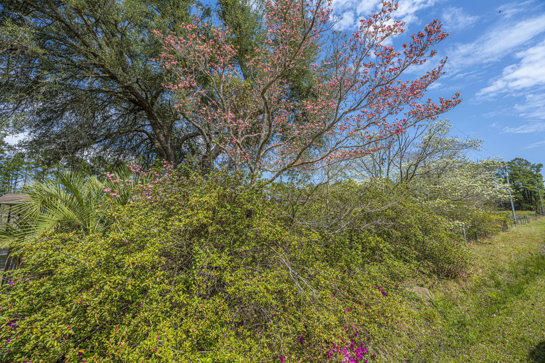 Gapway Plantation Homes For Sale - 9760 Randall, McClellanville, SC - 11