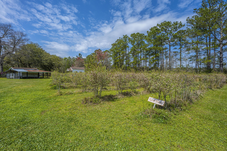 Gapway Plantation Homes For Sale - 9760 Randall, McClellanville, SC - 16