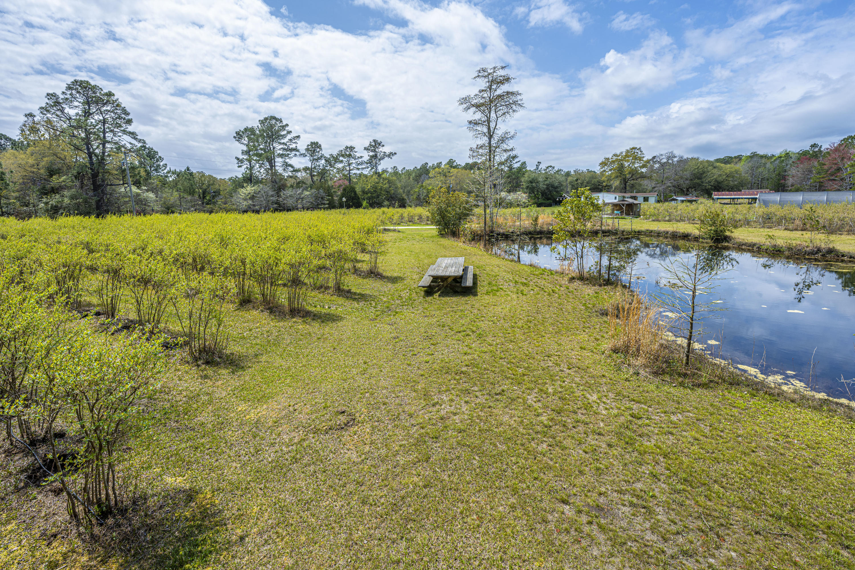 Gapway Plantation Homes For Sale - 9760 Randall, McClellanville, SC - 15