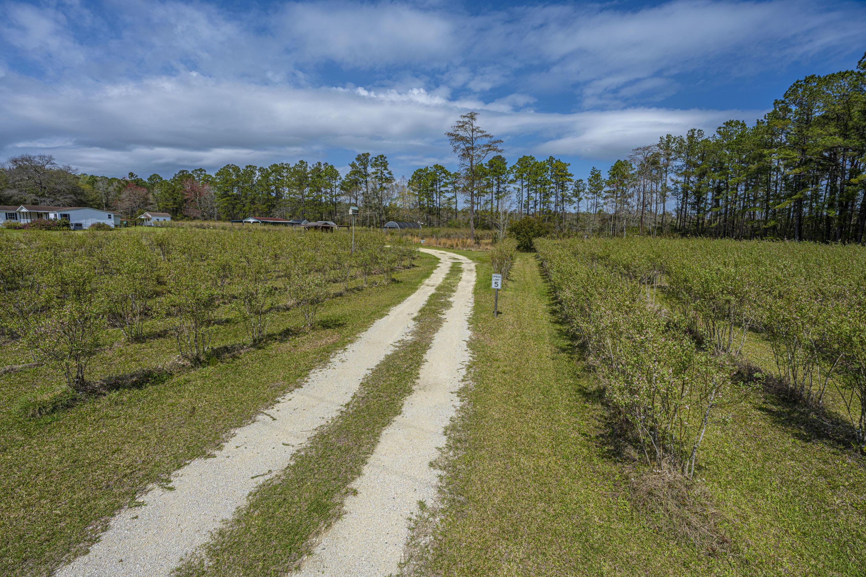 Gapway Plantation Homes For Sale - 9760 Randall, McClellanville, SC - 29