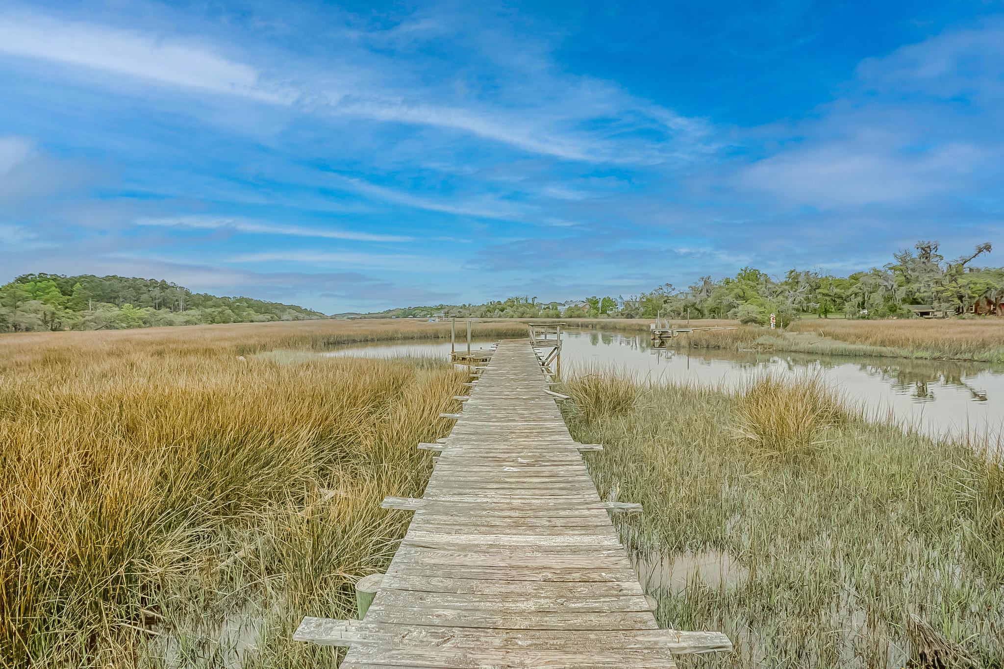 None Homes For Sale - 785 Copperhead, Johns Island, SC - 47