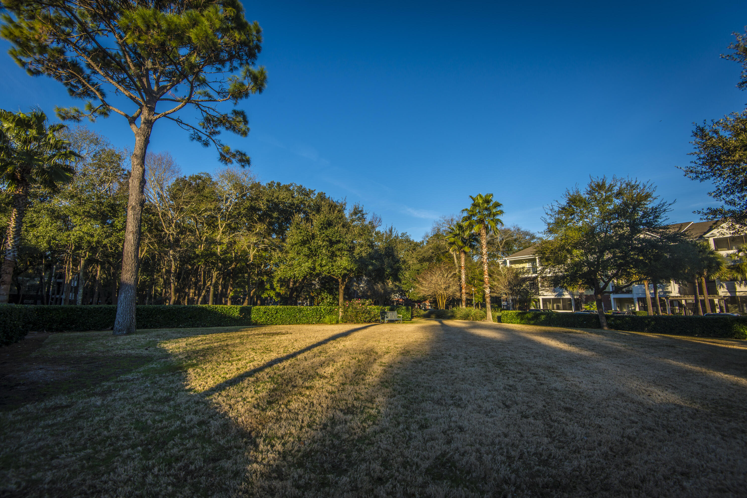 The Retreat at Riverland Homes For Sale - 1025 Riverland Woods Pl, Charleston, SC - 16