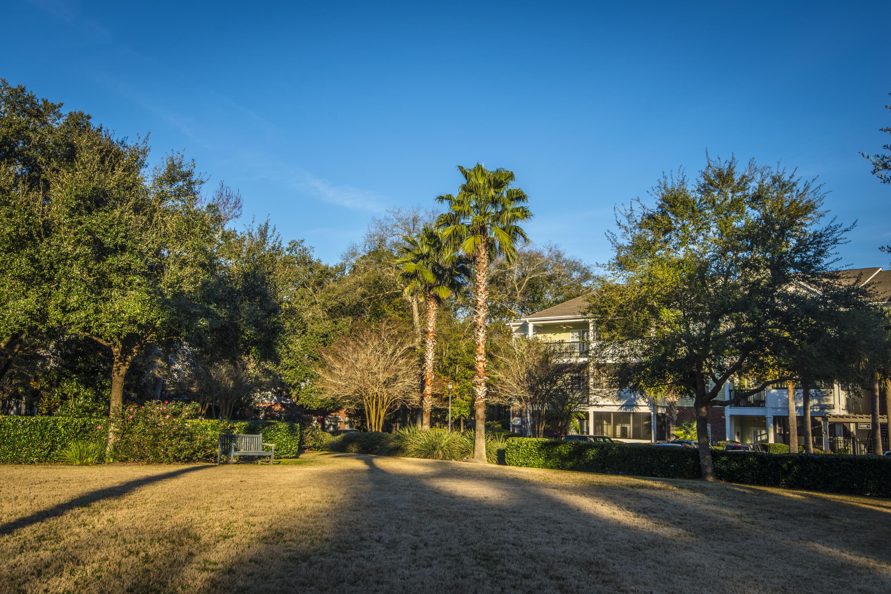 The Retreat at Riverland Homes For Sale - 1025 Riverland Woods Pl, Charleston, SC - 14
