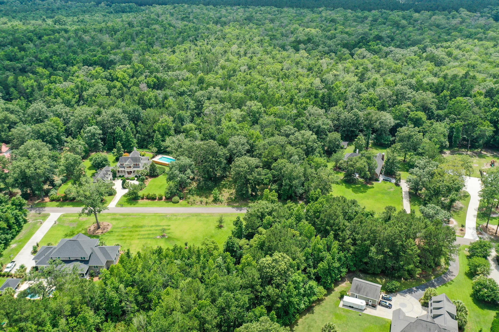 Boyle Plantation Homes For Sale - 126 Boyle, Summerville, SC - 3