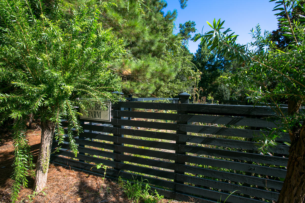 The Battery at Parkwest Homes For Sale - 1909 Basildon, Mount Pleasant, SC - 23