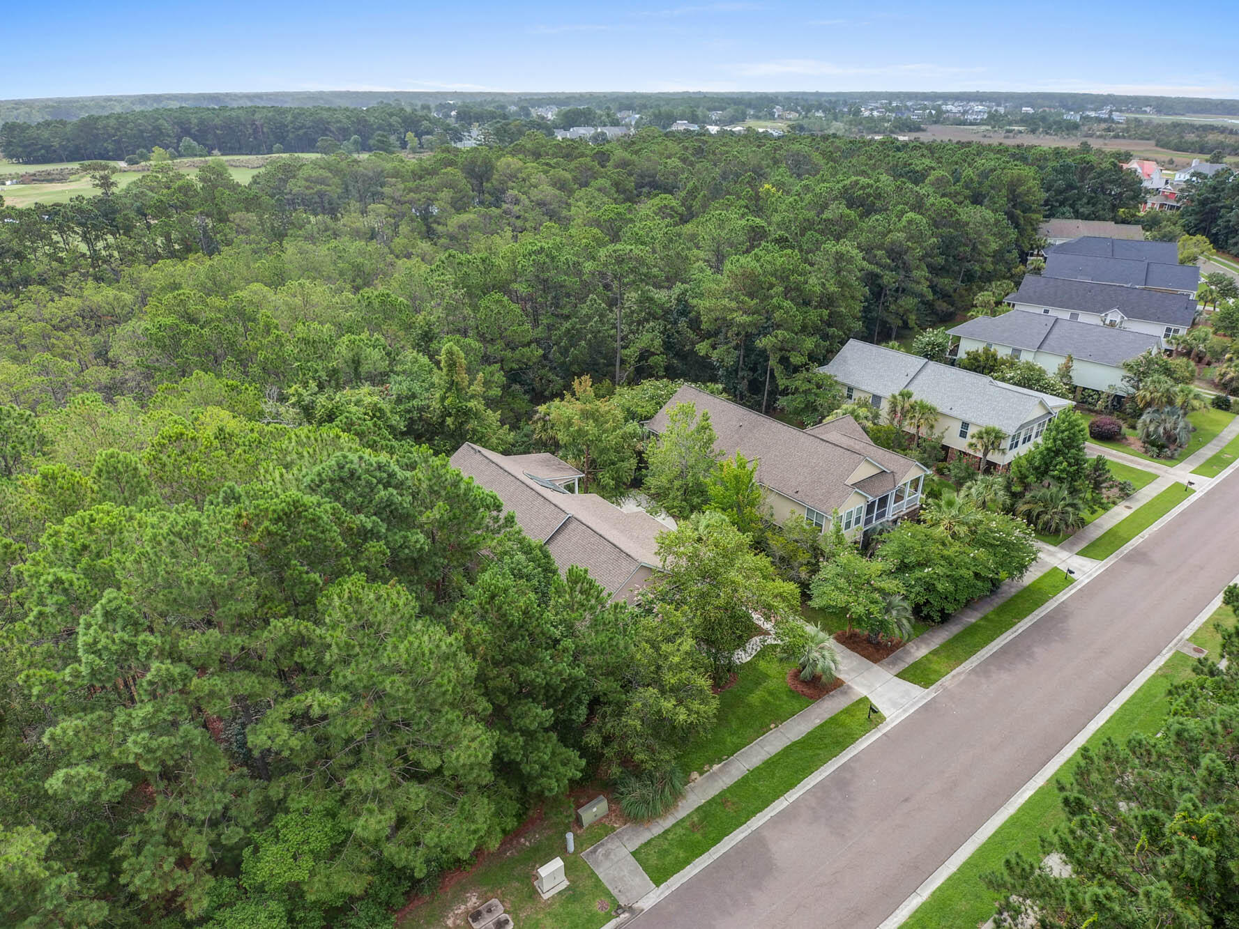 Rivertowne Country Club Homes For Sale - 1741 Rivertowne Country Club, Mount Pleasant, SC - 1