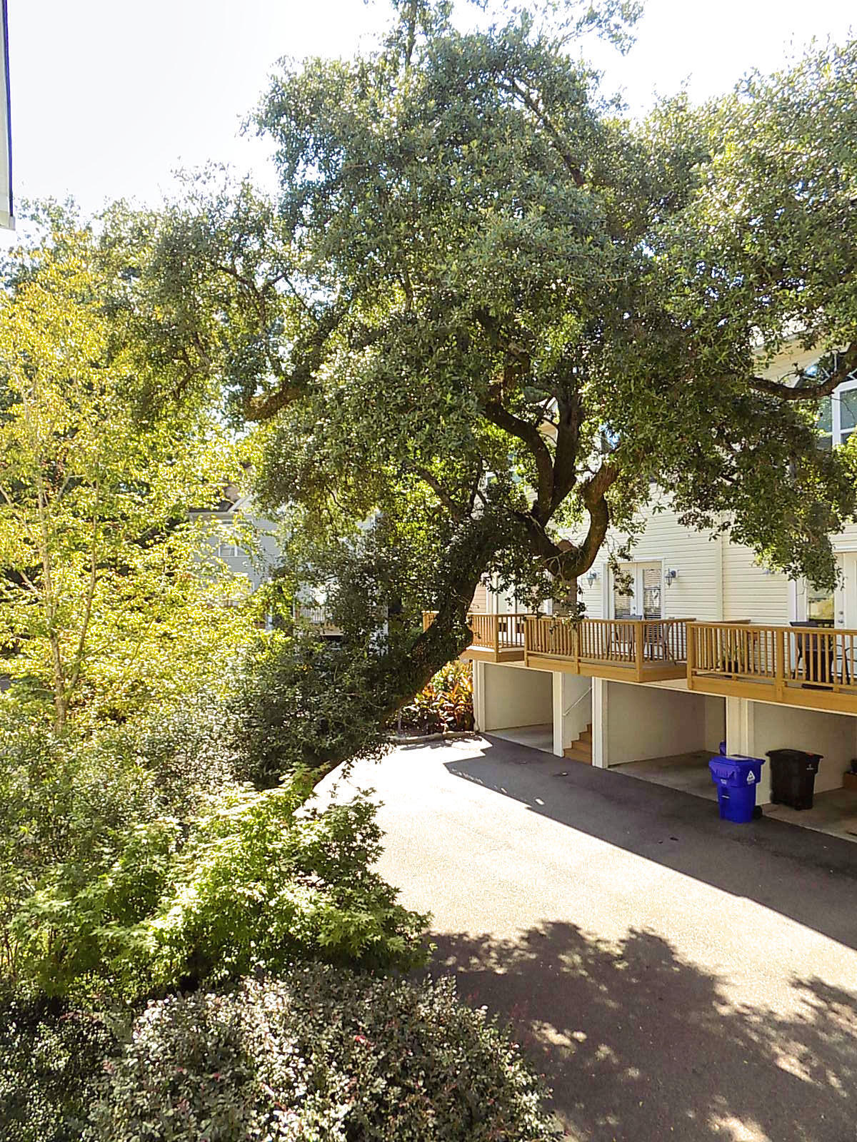 Willow Oaks Homes For Sale - 1829 Dogwood, Charleston, SC - 28