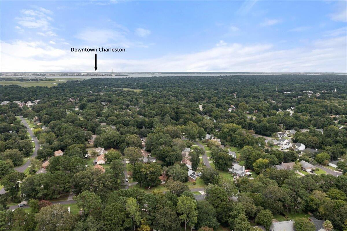 Willow Walk Homes For Sale - 1157 Bellwood, Charleston, SC - 25