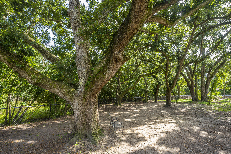 Regatta On James Island Homes For Sale - 1755 Central Park Road, Charleston, SC - 7