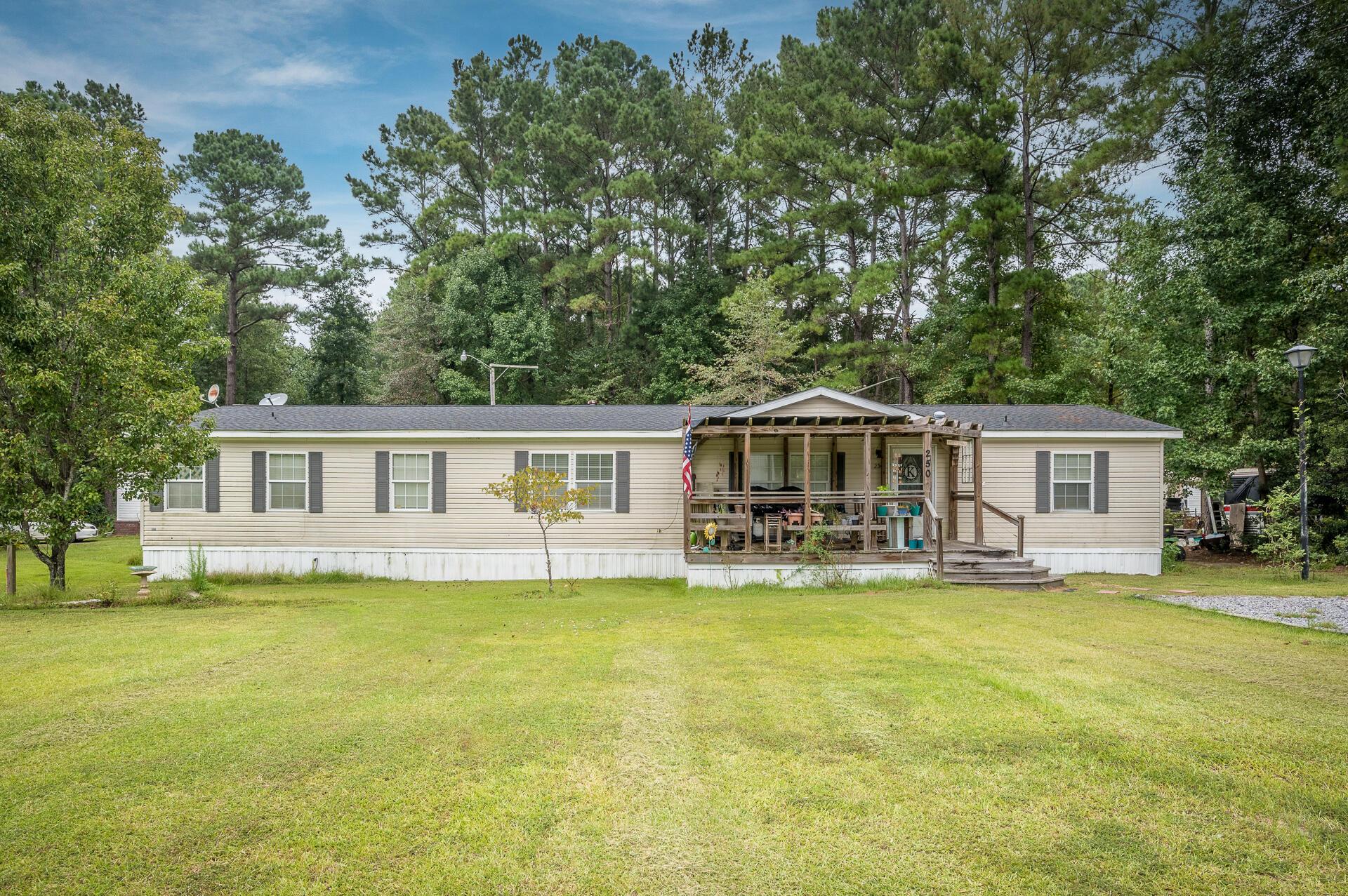 Clemson Terrace Homes For Sale - 250 Medina, Summerville, SC - 7