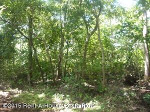 Terreno En Alquiler En Alajuela Centro, Orotina, Costa Rica, CR RAH: 15-145