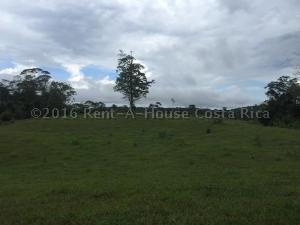 Terreno En Venta En Pital, San Carlos, Costa Rica, CR RAH: 16-416
