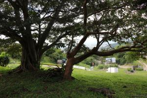 Terreno En Venta En Santa Ana, Santa Ana, Costa Rica, CR RAH: 16-811