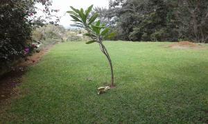 Terreno En Venta En La Garita, Alajuela, Costa Rica, CR RAH: 16-813