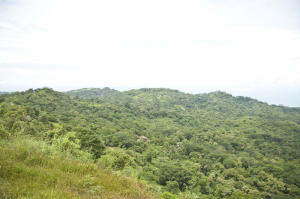Terreno En Venta En Baru, Perez Zeledon, Costa Rica, CR RAH: 17-387