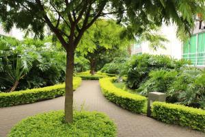 Apartamento En Alquiler En Santa Ana, Santa Ana, Costa Rica, CR RAH: 17-558