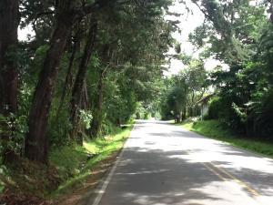 Terreno En Venta En San Isidro, Alajuela, Costa Rica, CR RAH: 17-782