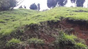 Terreno En Ventaen Cirri, Naranjo, Costa Rica, CR RAH: 17-744