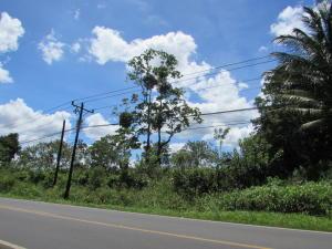 Terreno En Ventaen Sarapiqui, Sarapiqui, Costa Rica, CR RAH: 17-913
